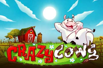 crazy-cows-logo2